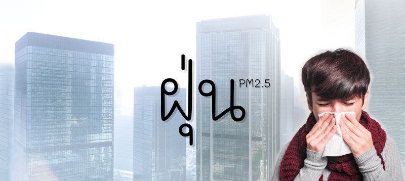 วิธีการลดฝุ่น PM2.5 ตามหลักการ คสช.